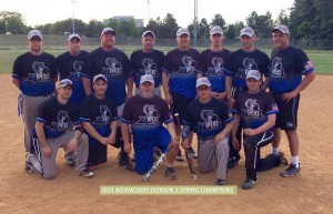 2015 WED D3 Champions